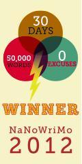 Winner-120x240